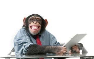Monkey on iPad