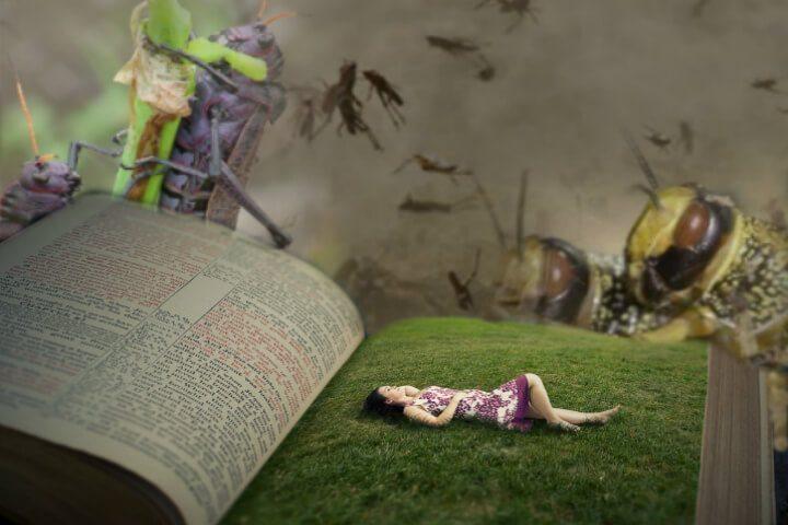 locust attack in prophecy of Joel